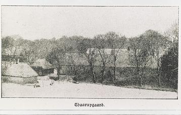 1905cafraøst(2)